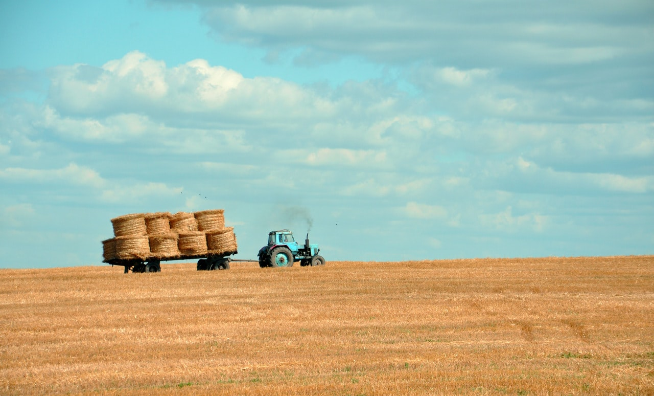 What Government programs address issues related to COVID-19 and Canada's Agriculture Sector?